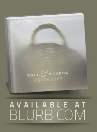 The Wall & Window Anthology - a photo book by Pekka Nikrus