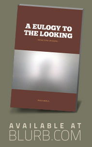 A Eulogy to the Looking - a photo book by Pekka Nikrus